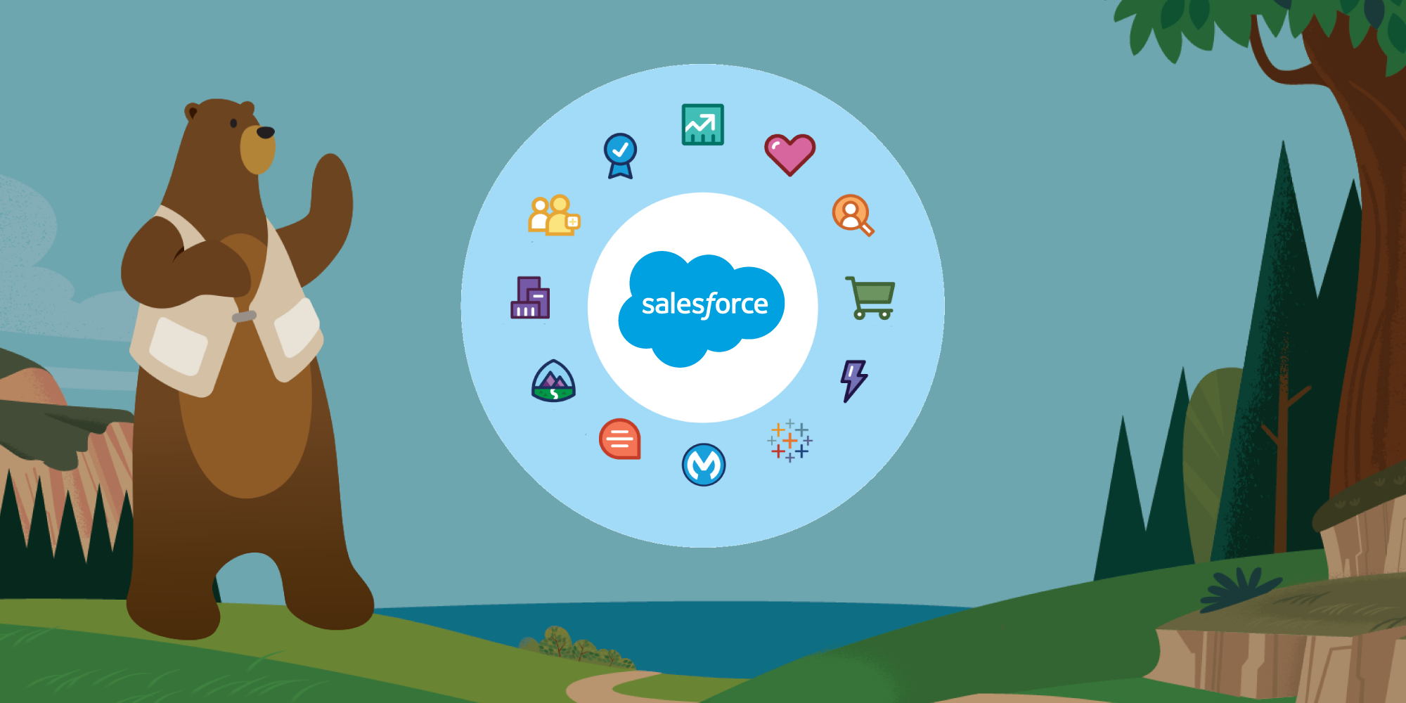 Salesforce for Your Business Needs